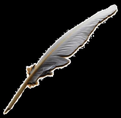 гусиное перо откуда появилась перьевая ручка